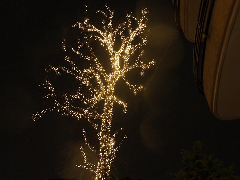 Möchten Sie auch einen schönen Leuchtbaum?