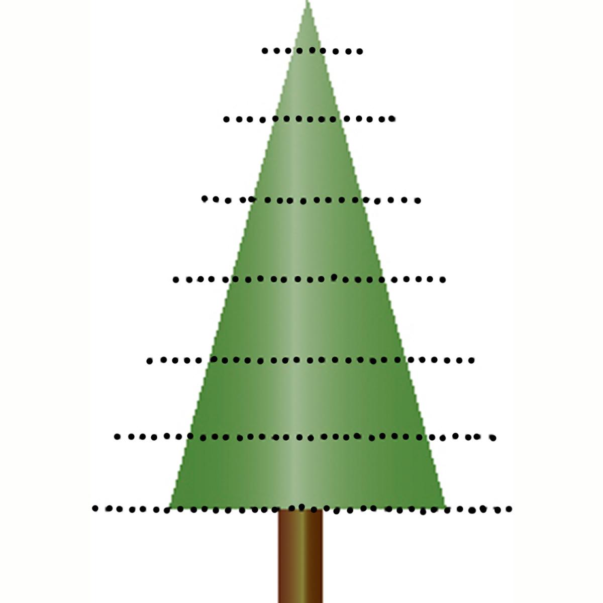 Tannenbaum Aeste waagrecht gebogen