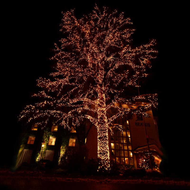 System Expo Baum leuchtet perfekt