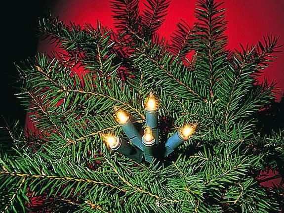Lichterkette Mini, 10 Push in Birne, Kabel grün, indoor