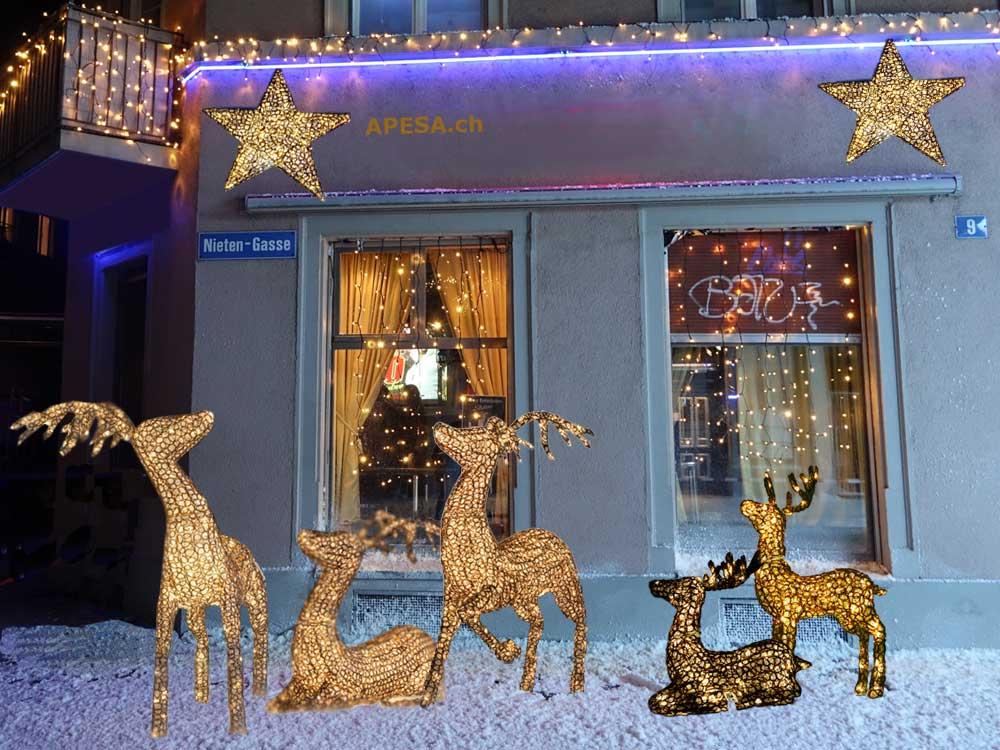 Weihnachtsbleuchtung blinkende Rentiere