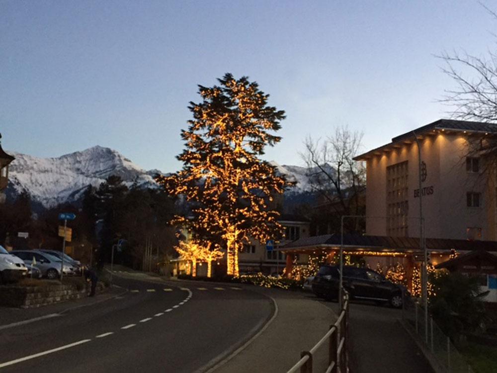 Ein Lichterbaum mit System Expo ist ausserordentlich schön