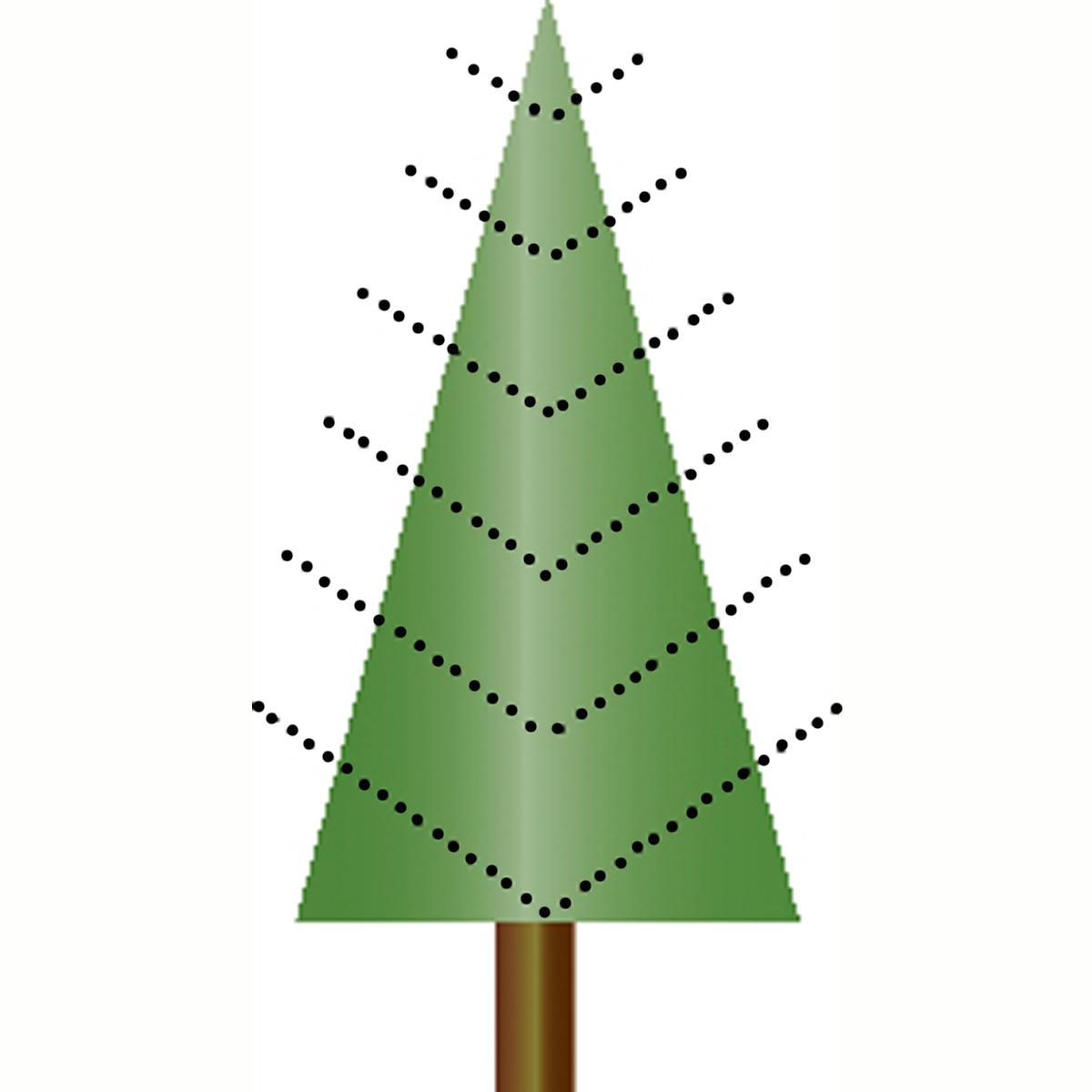 Tannenbaum Aeste nach oben gebogen
