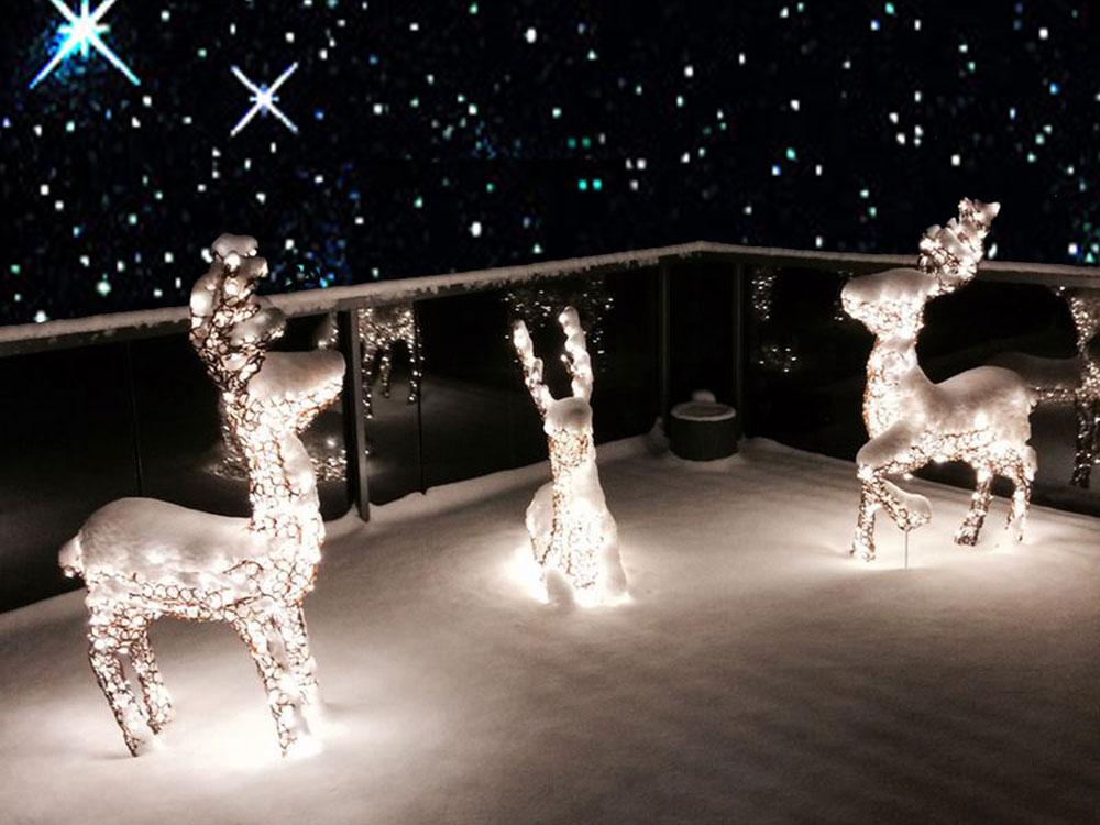 Weihnachtsbeleuchtung Schlitten Rentiere.Rentiere Beleuchtet Bernsteinfarbig Blog Apesa
