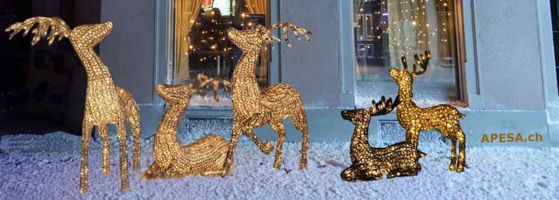 Leuchtmittel Weihnachtsbeleuchtung.Weihnachtsbeleuchtung Weihnachtslichter Apesa