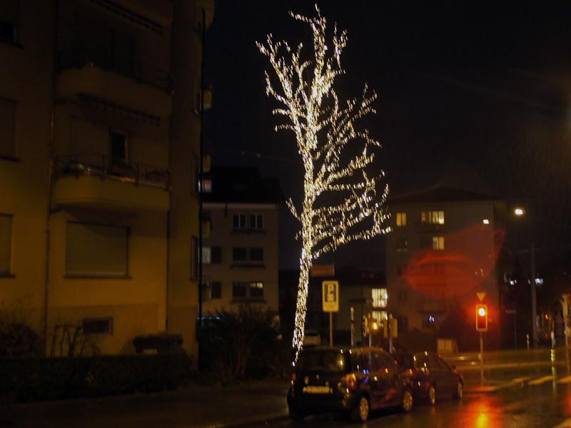 Schauen Sie den Leuchtbaum an
