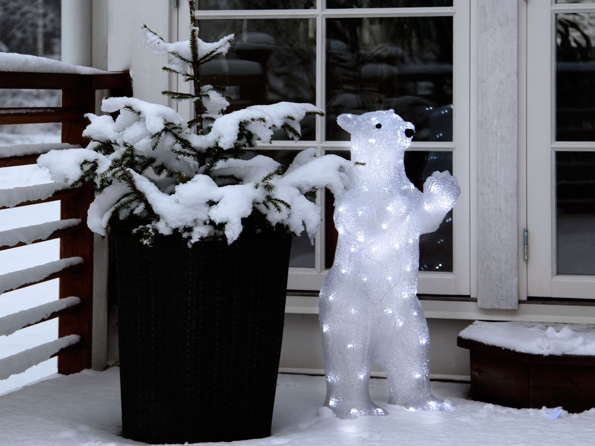 Eisbären sind eine bärenstarke Beleuchtung