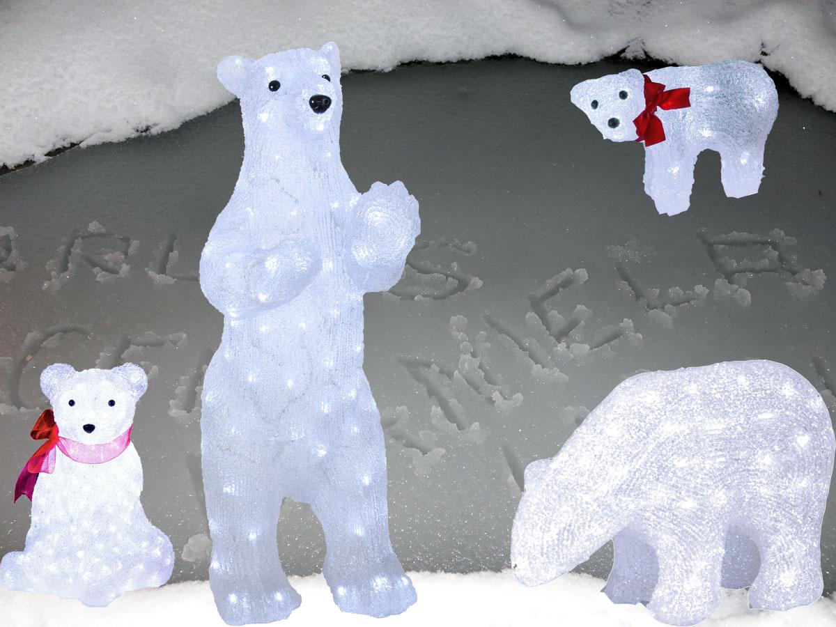 Eisbärenfamilie sieht in der Nacht toll aus