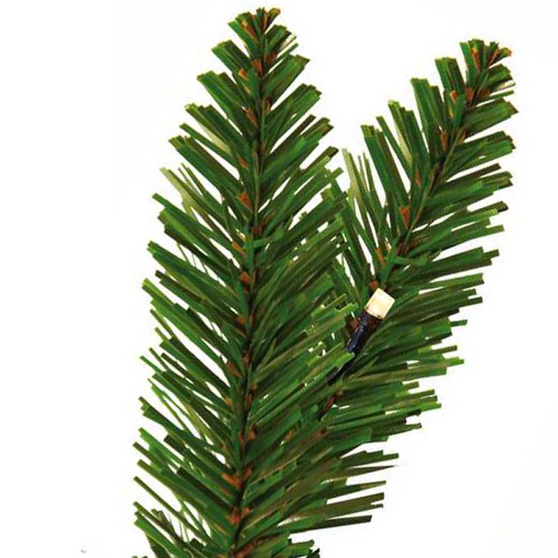 Nadeln des Tannenbaums mit Form eines Pfeilspitzes
