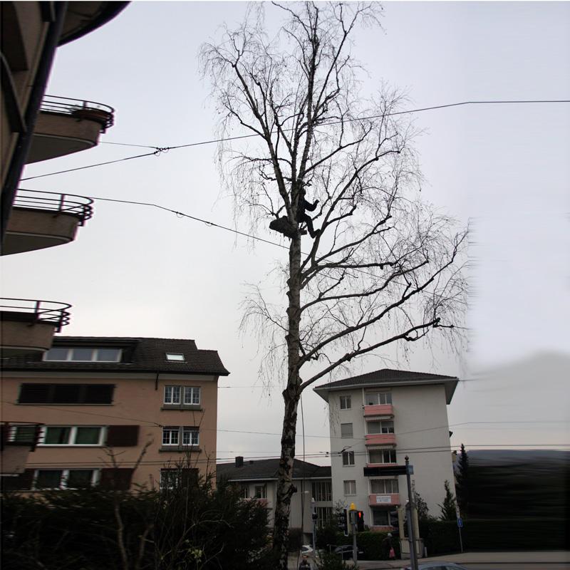 Beleuchter Baum am Tag