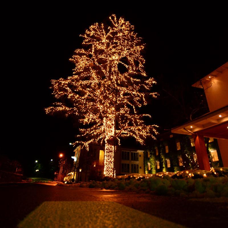 System Expo Leuchtbaum enthält